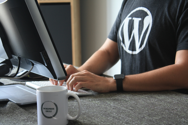 WordPress developer at work